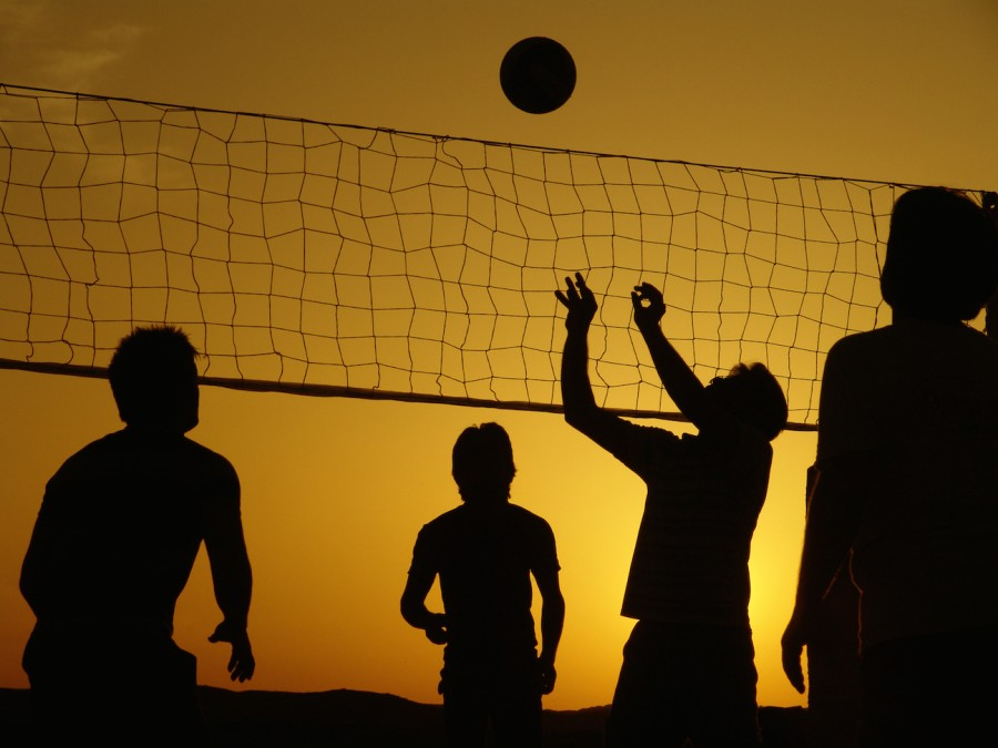 Boys Volleyball 2015 Preview